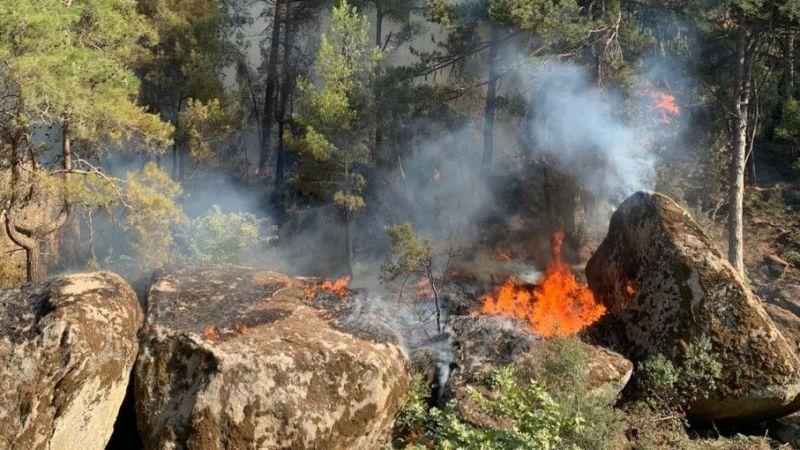 Karpuzlu'da orman yangını