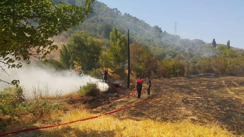 Söke'deki yangında 10 dönüm zirai alan zarar gördü