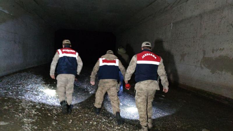 Van'da 200 kilo canlı inci kefali tekrar suya bırakıldı
