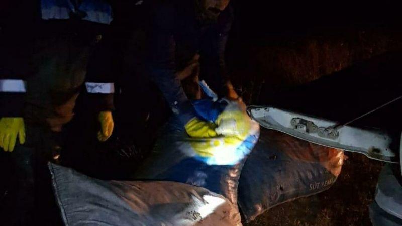 Van'da 300 kilo kaçak inci kefali ele geçirildi