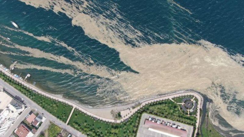 Deniz Salyası nedir? Deniz Salyası çözümü nedir, nasıl temizlenir?