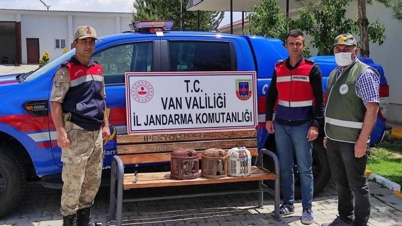 Van'da kafes avcılığı yapan 2 kişi jandarmaya takıldı