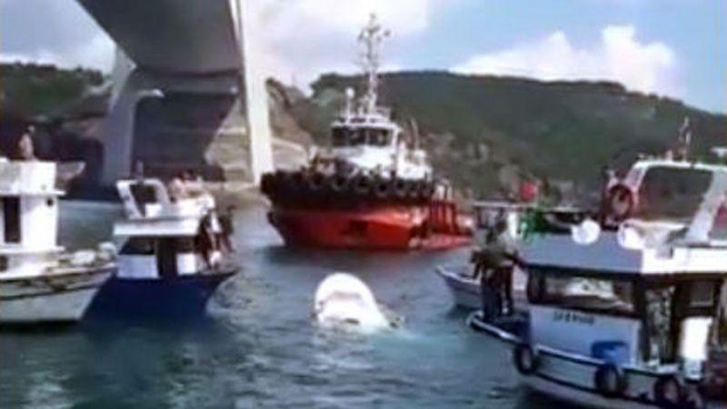 İstanbul'da balıkçı teknesi ile gemi çarpıştı!