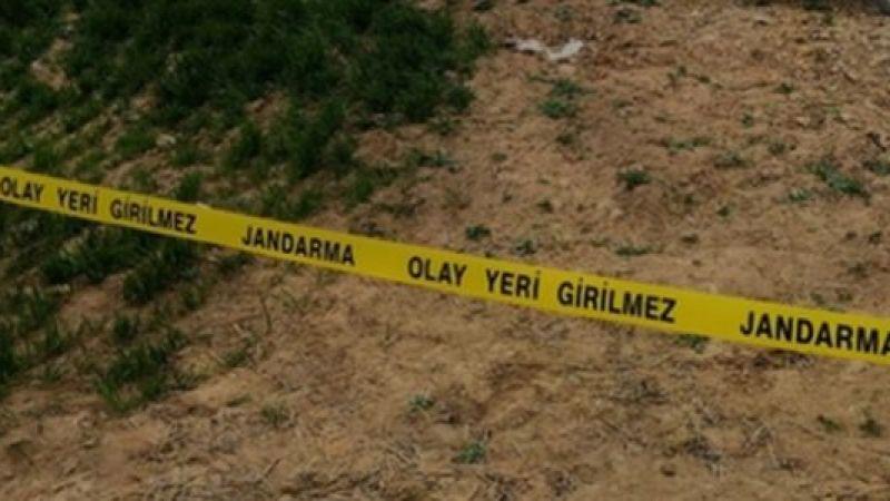Van Çaldıran'da 2 erkek cesedi bulundu!