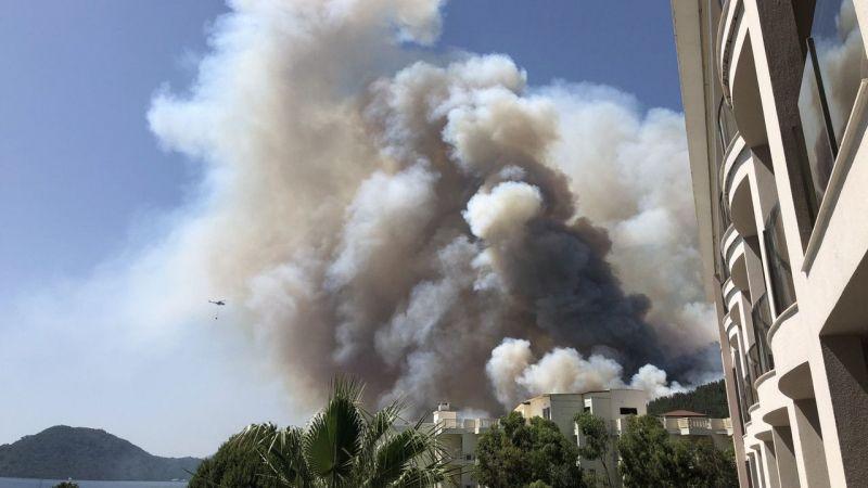 Muğla Marmaris'te orman yangını!