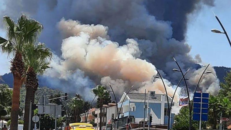 Marmaris'te orman yangın çıktı!