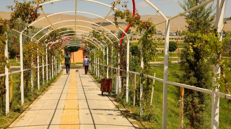 Gürpınar Belediyesi ağaçlandırma çalışmalarını sürdürüyor