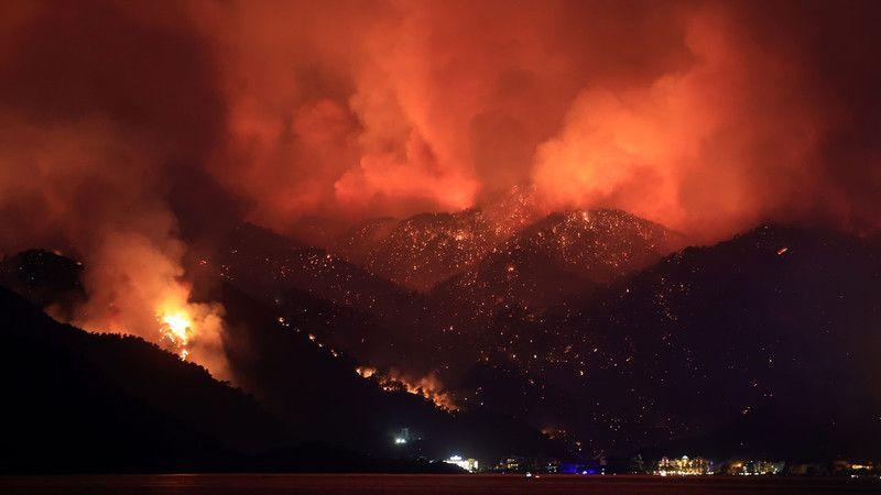63 orman yangınından 43'ü kontrol altına alındı