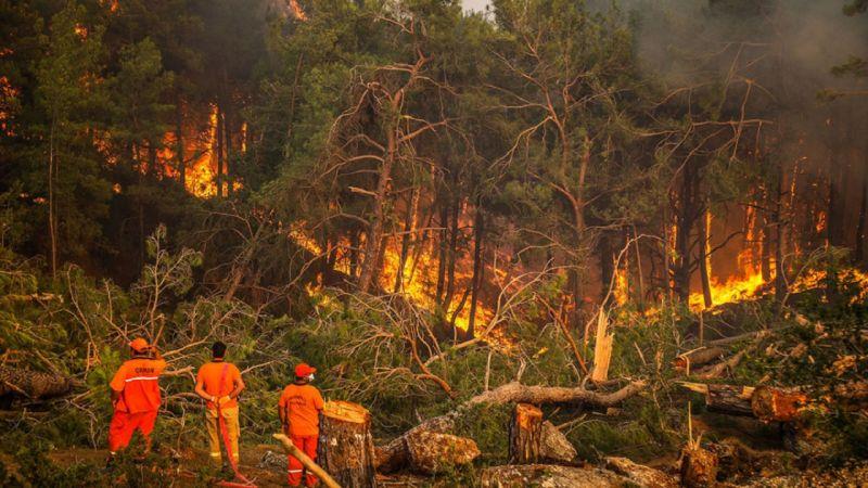 Türkiye'deki yangınlarda son durum ne?