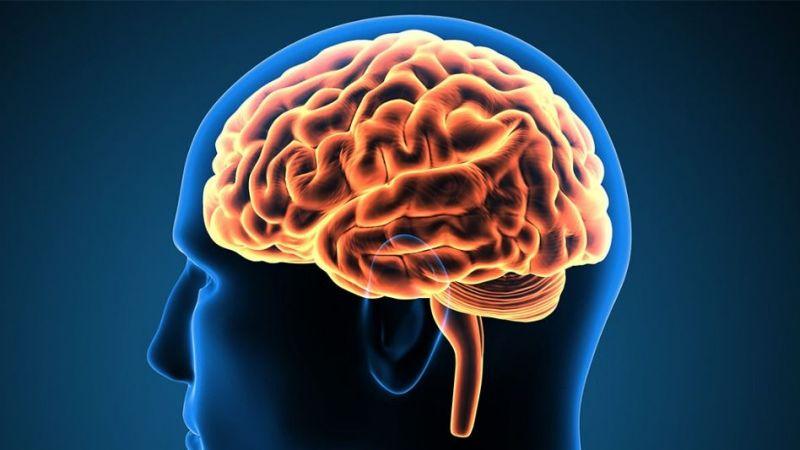 Sıvı kaybı beyin hastalıklarını tetikliyor