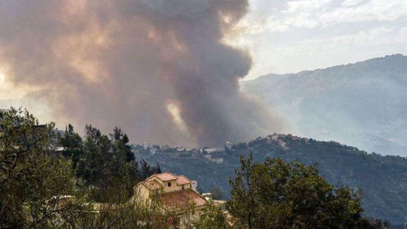 Cezayir'deki orman yangınlarında 42 ölü!