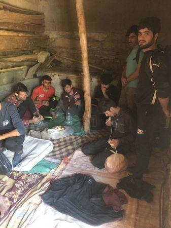 Van'da 42 düzensiz göçmen ahırda yakalandı