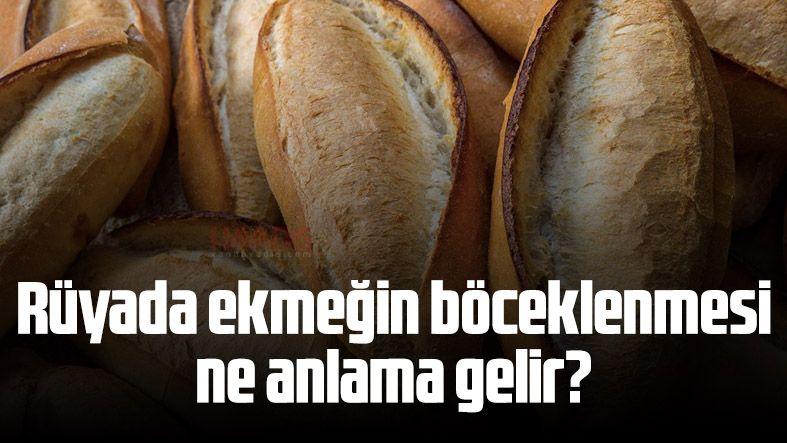 Rüyada ekmeğin böceklenmesi ne anlama gelir?