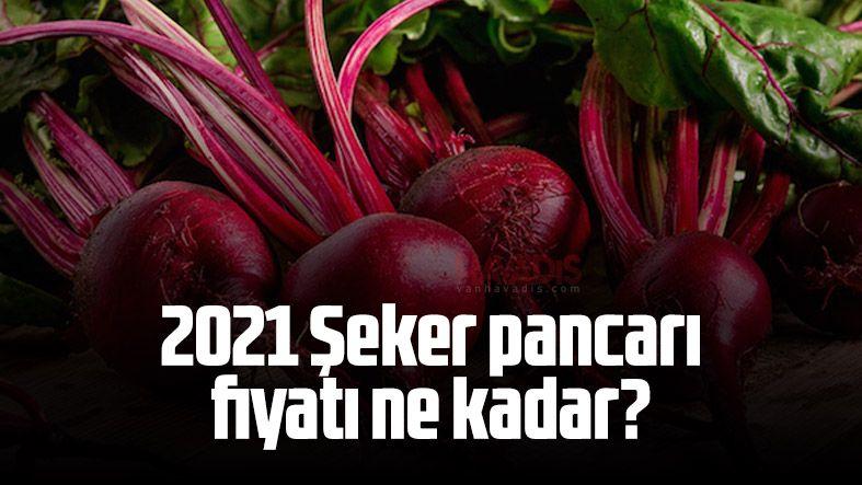 2021 Şeker pancarı fiyatı ne kadar?