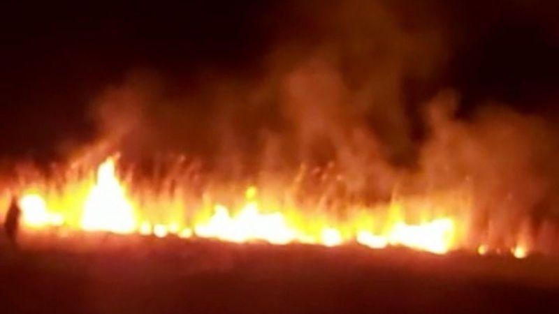Van Baklatepe sazlık alanında yangın!