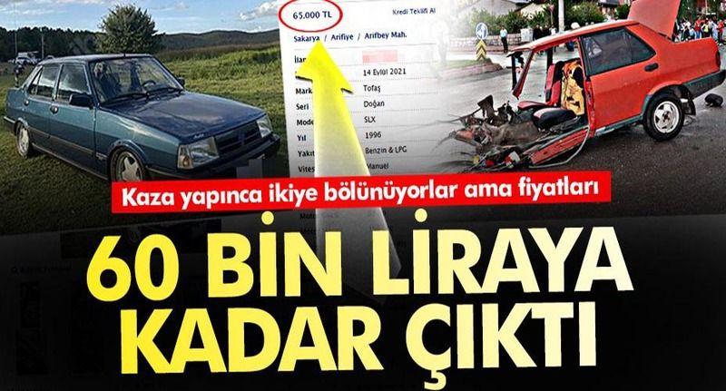 Kaza yaptıklarında 2'ye bölünüyorlar ama fiyatları 60 bin liraya kadar çıktı!