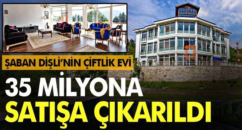 Şaban Dişli'nin Geyve'deki çiftlik evi 35 milyon liraya satılığa çıktı