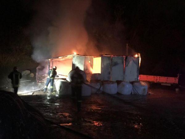 Kocaeli'nin Gölcük ilçesindeki bir çiftlikte çıkan yangın korkuttu