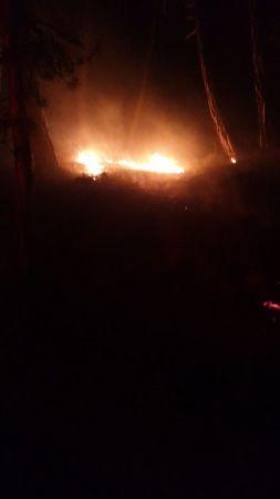 Soğuksu Milli Parkı'nda yangın
