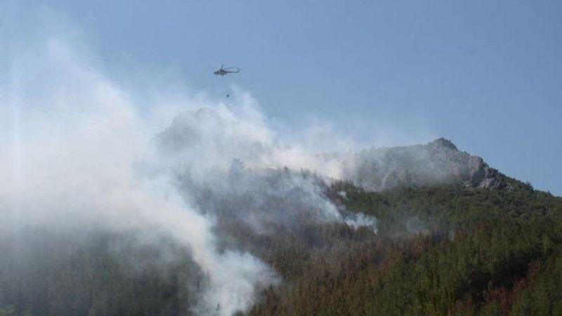 Yıldırım düştü, 3 hektarlık ormanlık alan zarar gördü