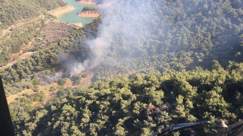 İzmir'de orman yangını paniği