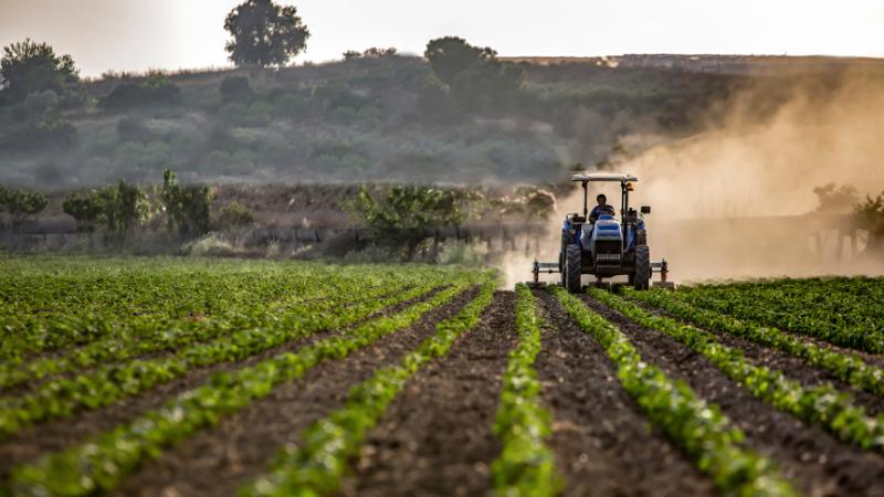 Tarım-ÜFE yıllık yüzde 24,69 arttı | Son Dakika