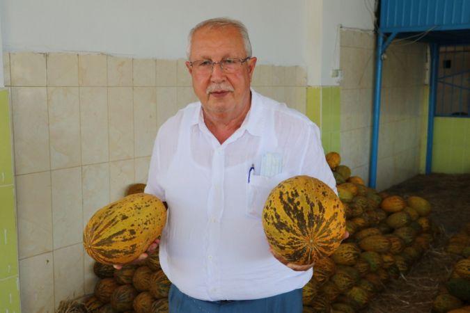 Kurban Bayramı öncesinde sebze ve meyveye zam yok | Son Dakika