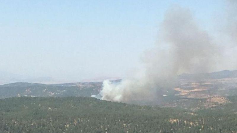 Kilis'te orman yangını çıktı