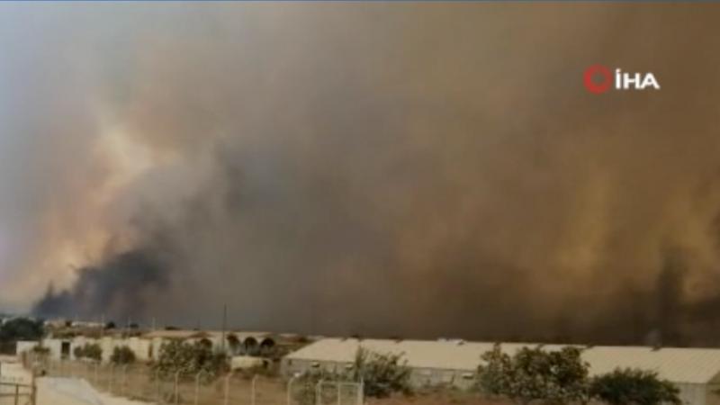AFAD'dan devam eden yangınlarla ilgili açıklama