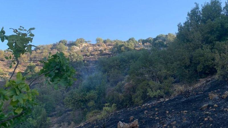 Gaziantep'te orman yangını korkuttu   Son Dakika