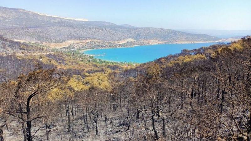 Silifke'de orman yangını devam ediyor |Son Dakika