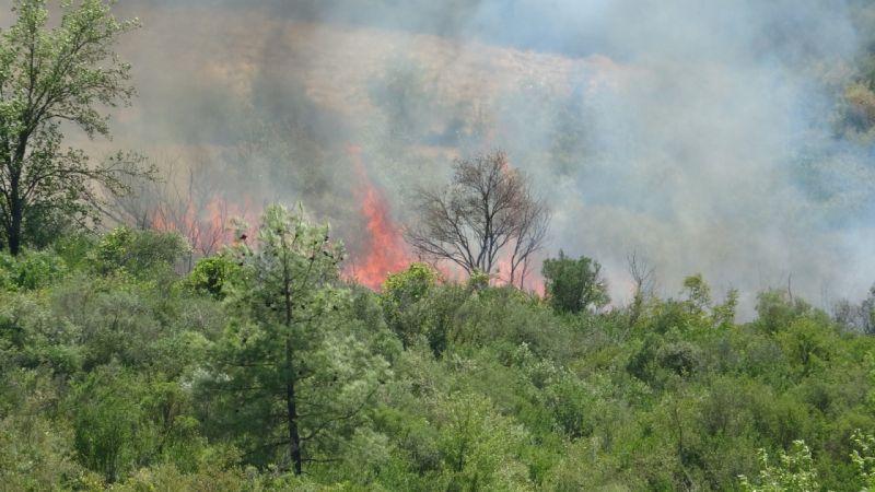 Isparta Sütçüler'deki yangın büyüyor |Son Dakika