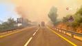 İşgal altındaki Kudüs'te ormanda büyük yangın