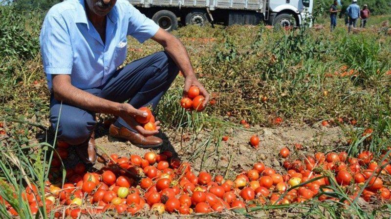 Gıda enflasyonu daha şimdiden 2020'yi geçti |Son Dakika