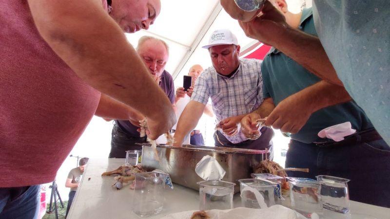 2 gün aç kaldıkları oğlak yeme yarışması için bir oğlağı 4 dakikada bitirdiler | Son Dakika