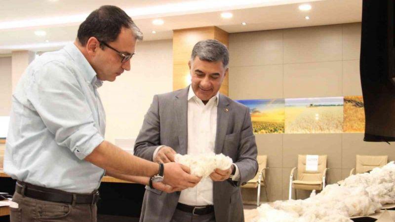 Diyarbakır Ticaret Borsası'nda online pamuk alım satımı yapıldı
