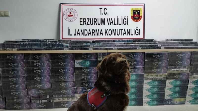 Erzurum Operasyon