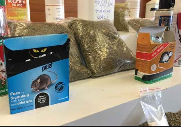 Akılalmaz plan bitki çayı fare zehri ile bonzai imalathanesi!..
