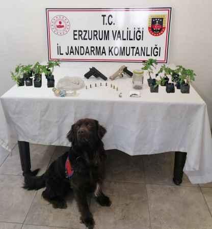 Hayvan hırsızlığı ve uyuşturucu tacirlerine dev operasyon!