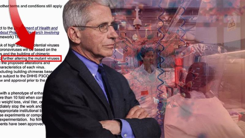 Beyaz Saray Tıp Danışmanı Dr. Anthony Fauci için şok iddia! Beklenen koronavirüs belgeleri yayınlandı!
