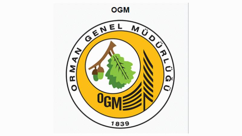 OGM Mülakatsız 47 Kamu Personeli Alımı Başladı! Lise, Ön Lisans ve Lisans