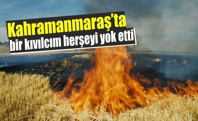 Kahramanmaraş'ta buğday tarlasında yangın