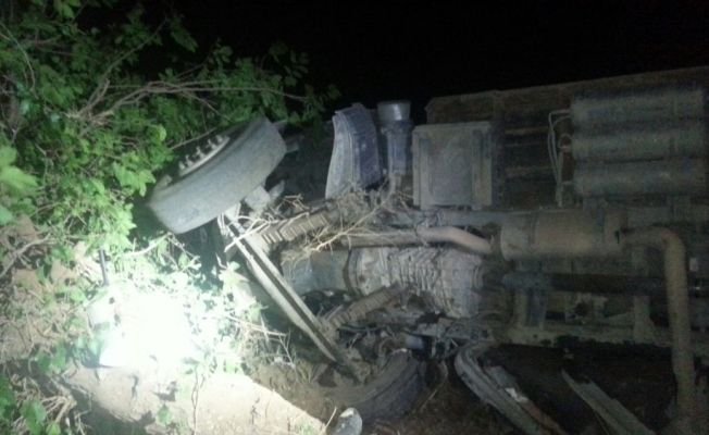 Elazığ'da trafik kazası: 5 yaralı, 50 hayvan telef oldu