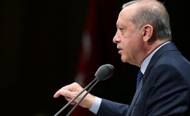 Cumhurbaşkanı Erdoğan'dan ölen yavru köpekle ilgili açıklama