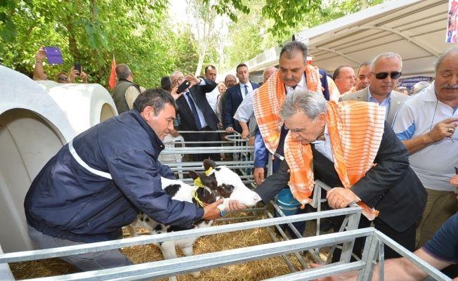 İzmir tarımda şaha kalktı