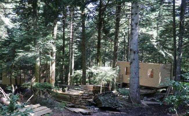 Gölcük Tabiat Parkı'na 25 bungalov ev inşa ediliyor