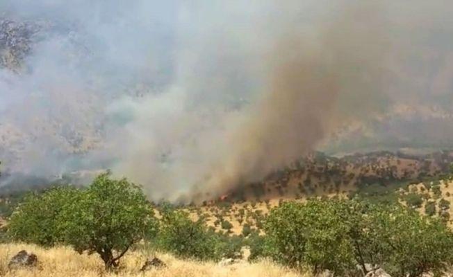 Irak'ın kuzeyi alev alev yanıyor