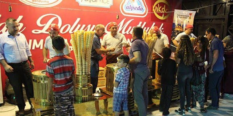 """""""2. Uluslararası Kahramanmaraş Dondurma ve Kültür Sanat Festivali"""""""