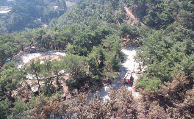 Hatay'daki orman yangınının etkileri havadan görüntülendi