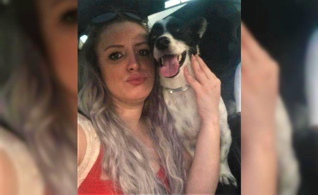 Kaybettiği köpeği için sosyal medyada yardım istedi